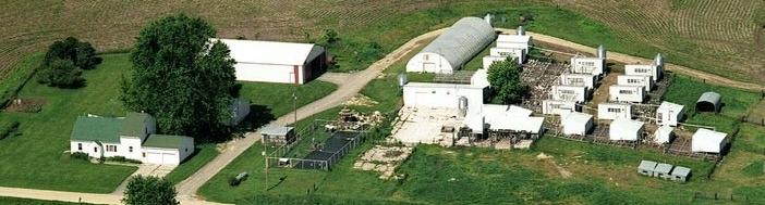 Guinea-Farm-W
